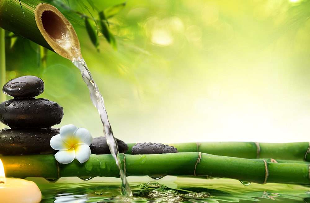 What is a Holistic Wellness Center?